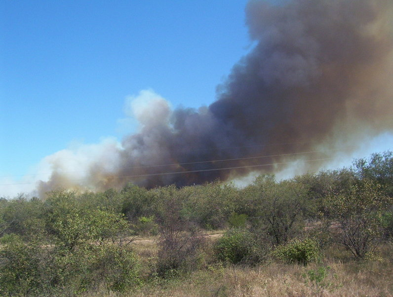 Incendio de montes sobre la ruta 81. Field fire on road 81