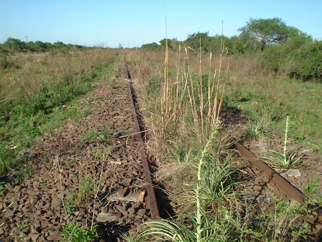 "the abandoned railtrack of the ""General Urquiza Railways"""