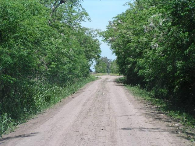 a dirt road towards ENE