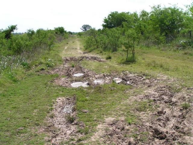 one of the dirt roads in the area