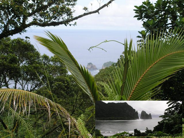 From the Mt. 'Avala Trail, another visible landmark is Pola Island (the Cock's Comb), shown also in the small inset.
