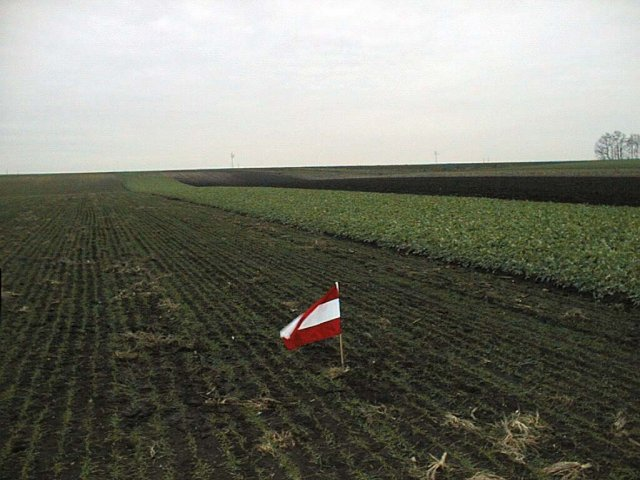 The confluence with austrian flag (looking west)