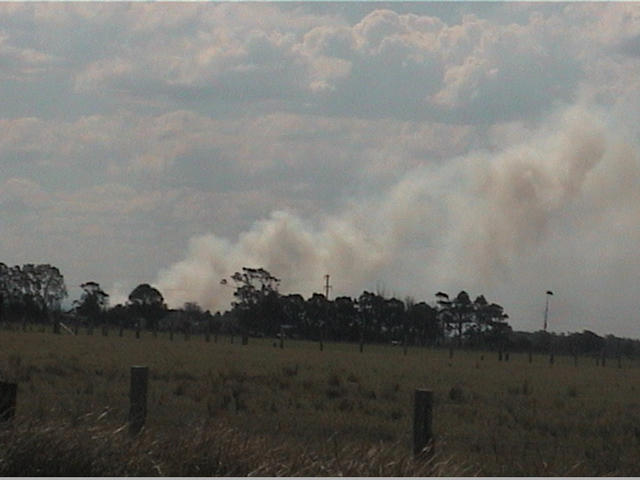 A bushfire burns in the distance.