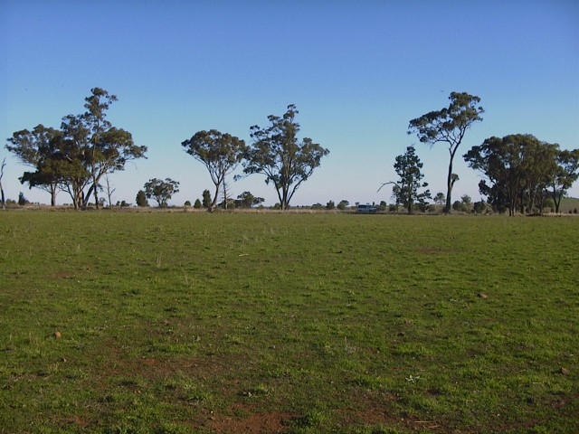 Looking south - a flat plain