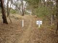 #6: Scrubby Lane Road closure