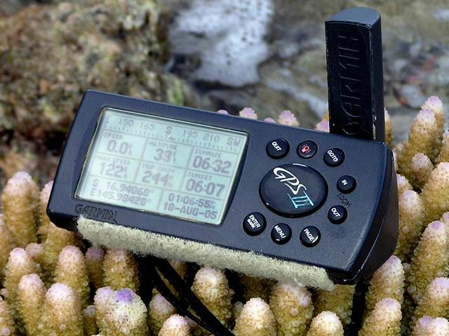 My GPS receiver (and coral).  This is about as close as you can get to the confluence on land.