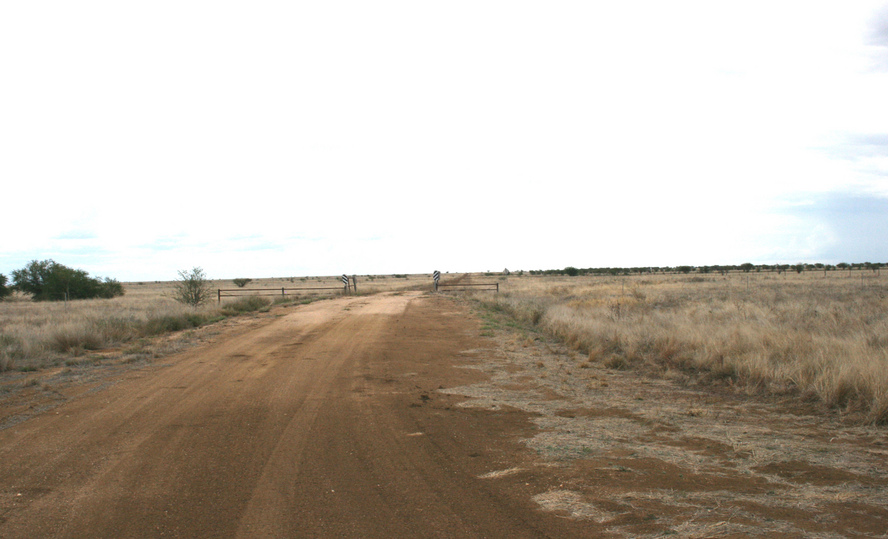 Road to Lucindale and Leslew Downs stations