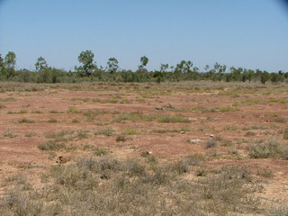 #1: View of site from the North
