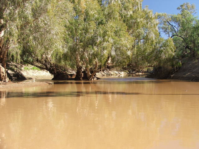 "Midgingar Waterhole, Georgina River nr ""Ormiston"""
