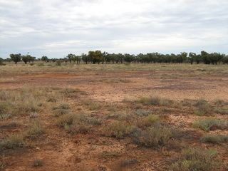 #1: Confluence point is in clay pan.