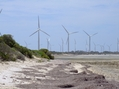 #8: Wattle Point Wind Farm