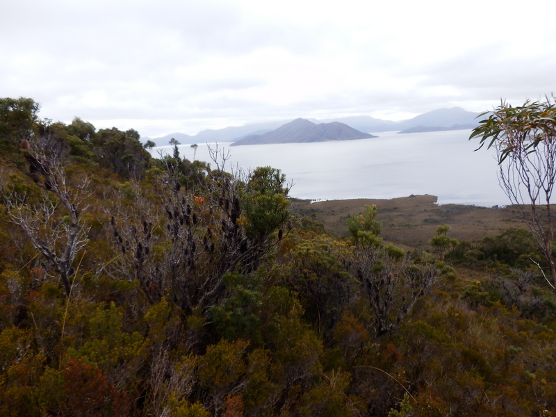 View to Lake Pedder