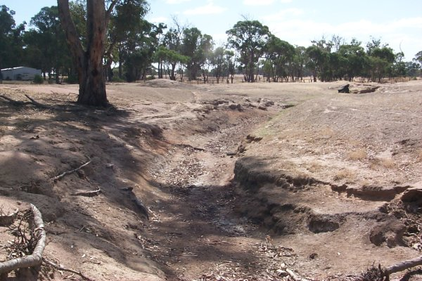 A dried up gully 100m northwest of the confluence gives evidence of the drought that has been affecting this already arid region