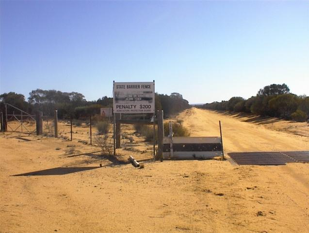 The 'Emu Proof Fence' looking north