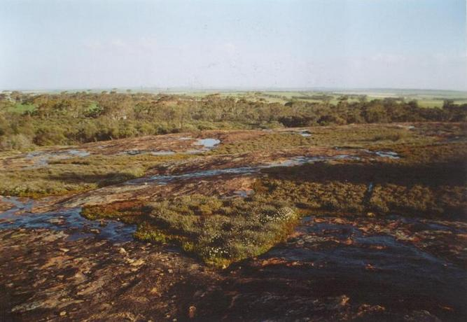 View South from Uberin rock located approx. 1 km West of confluence