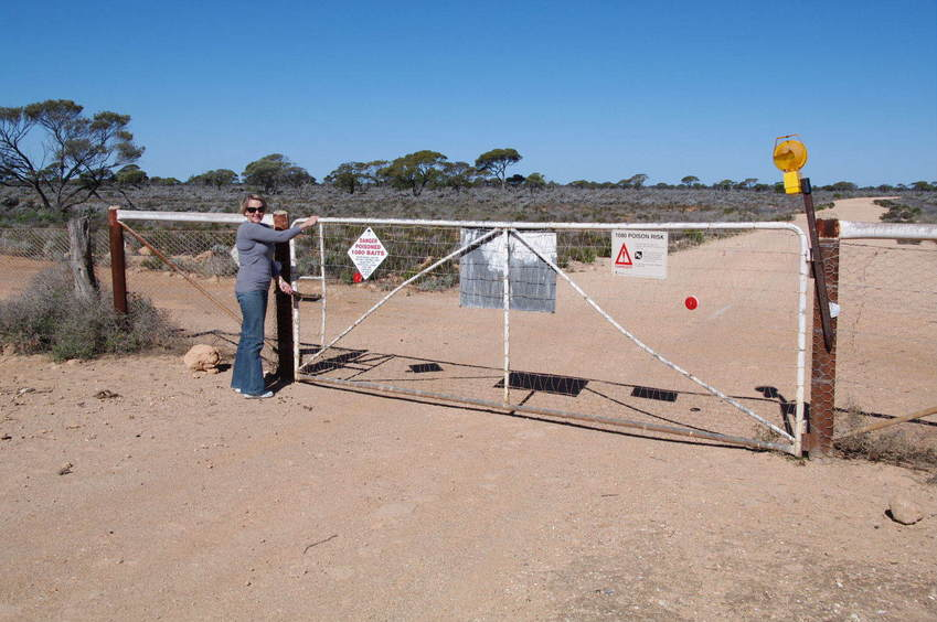 The Dingo fence that you have to pass through to reach the site