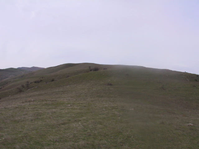 Looking uphill to the West