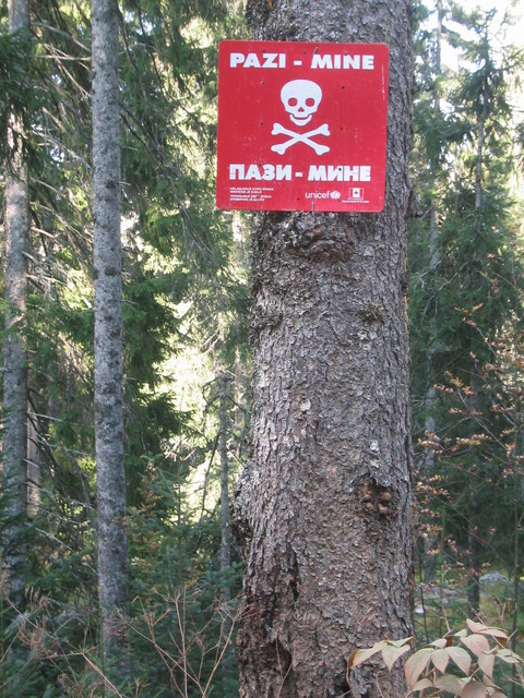 Finally made it into the forest where there were numerous signs about mines