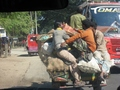 #7: Bangladeshi road traffic