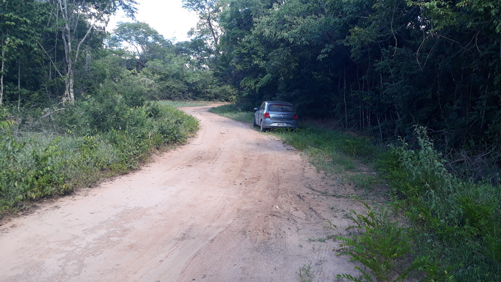 Parei o carro no início da estrada secundária - I stopped the car at the beginning of secondary road