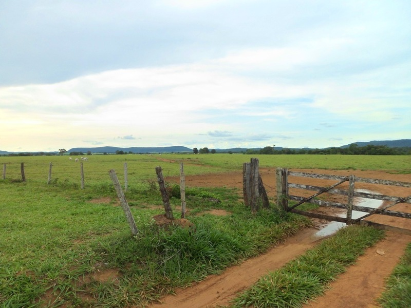 Entrada da fazenda onde se localiza a confluência - entrance of farm where lies the confluence