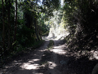 #12: Belo trecho da caminhada - beautiful region of hiking