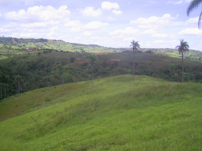 Confluência no fundo do vale, 360 metros adiante - confluence in the bottom of the valley, 360 meters ahead