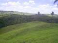 #7: Confluência no fundo do vale, 360 metros adiante - confluence in the bottom of the valley, 360 meters ahead