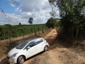 #7: Calle frente a la plantación. Road in front of coffee plantation