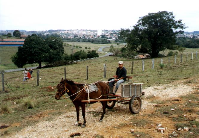 Local  inhabitant in a cart with the confluence and Conchas in the background