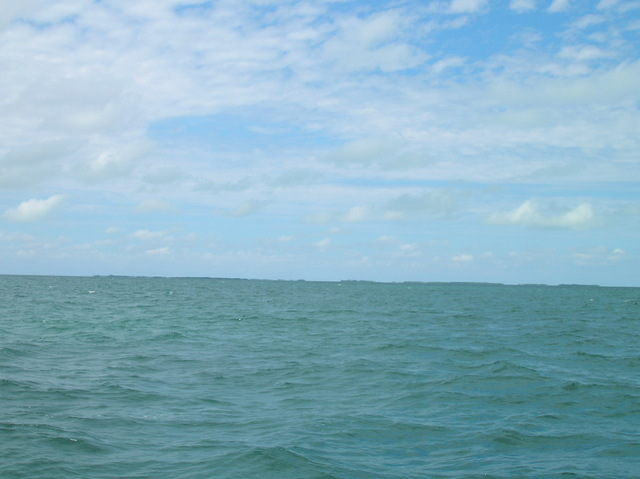 Looking north to Carter's Cays