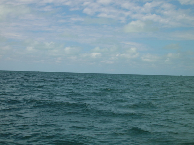 Looking east to the Pawpaw Cays