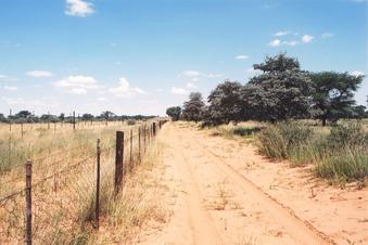 #1: Facing south along the Namibian/Botswana boarder