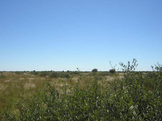 From Confluence looking North