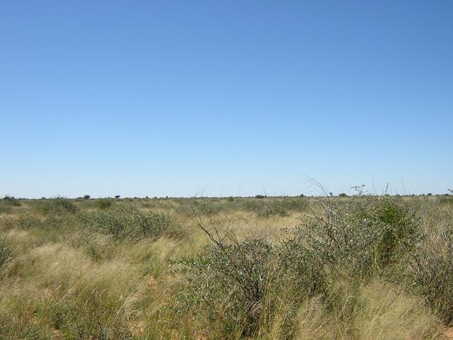From Confluence looking East