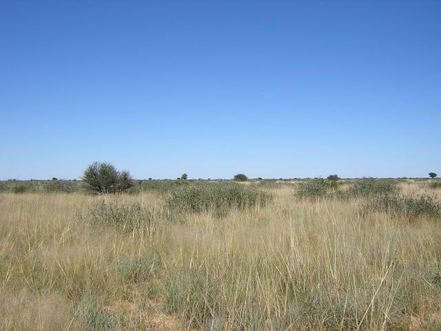 From Confluence looking South