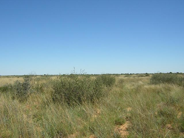 From Confluence looking West