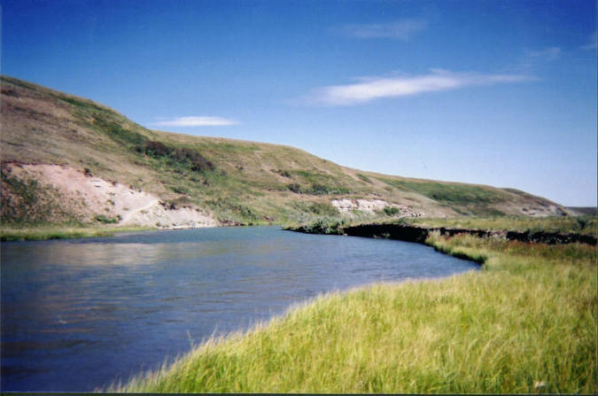 Looking north, down the North Milk River