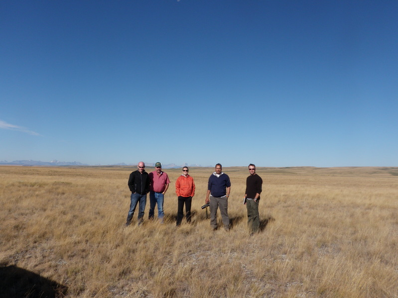 Fescue Reclamation Project Group