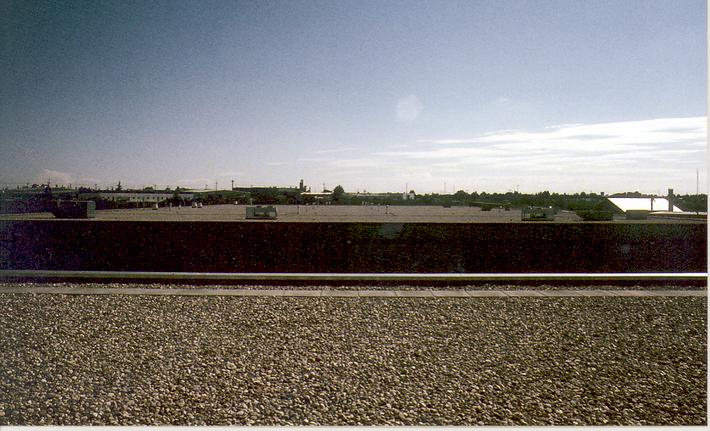 On roof looking East