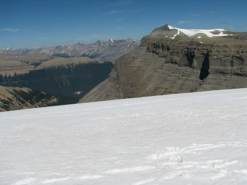 The icefield at the confluence point with Mount Amery in the background