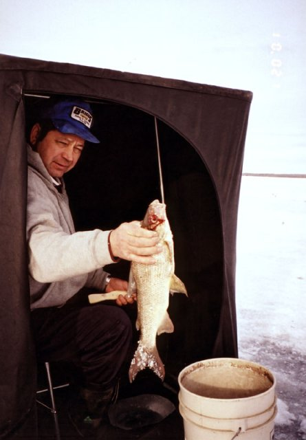 A fisherman displaying the fine whitefish he caught, 1.6km from the confluence.