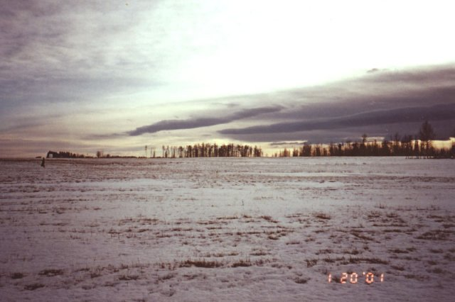 Looking south across the hayfield; an Albertan winter sky at dusk.