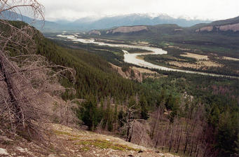 #1: Looking south from the highpoint, 300 meters above the Athabasca Valley
