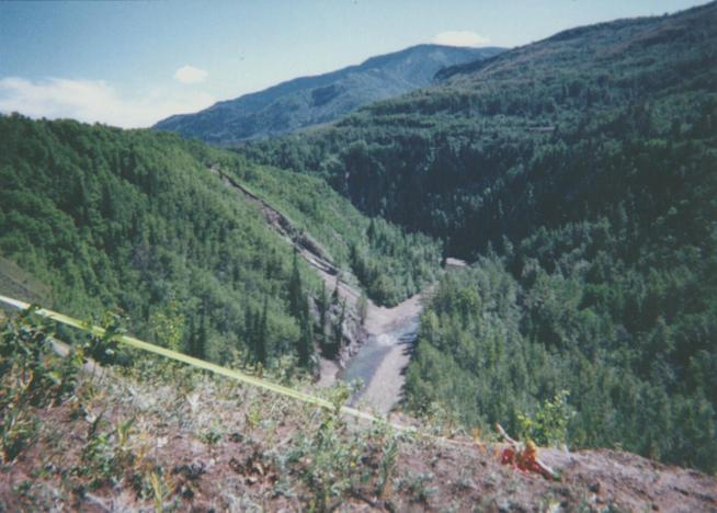 View south up Muskeg River valley towards confluence. Loaded seismic shot hole marked by ribbon.