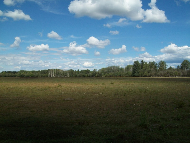 The nearest open space, the pasture where we left the quads.