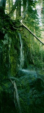 #1: Waterfall to North