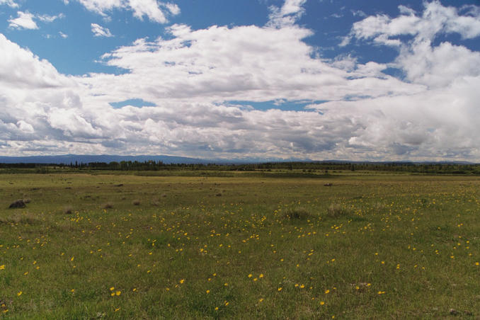 Field next to Highway 20, with mountains in background