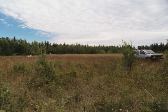 #1: North, looking across the clearing where the old speedway used to be