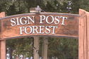#2: Sign Post Forest